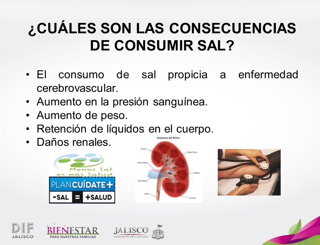 ¿CUÁLES SON LAS CONSECUENCIAS DE CONSUMIR SAL