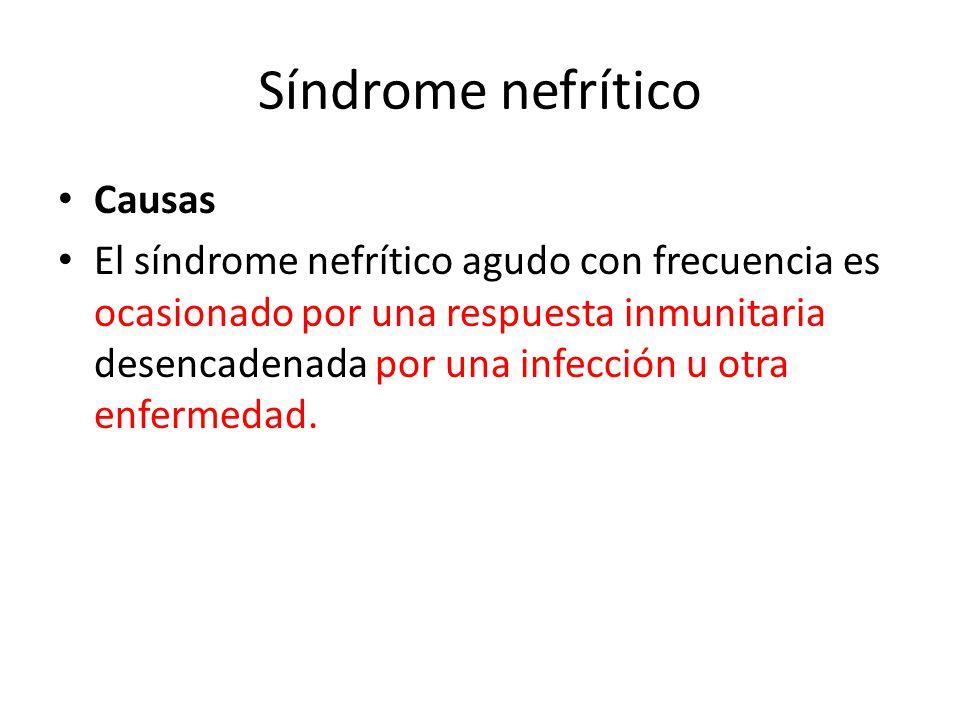 Síndrome nefrítico Causas