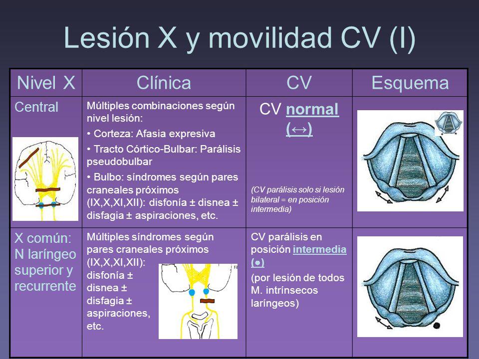 Lesión X y movilidad CV (I)