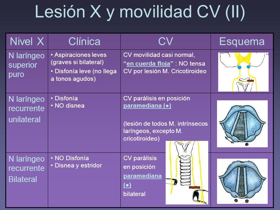 Lesión X y movilidad CV (II)