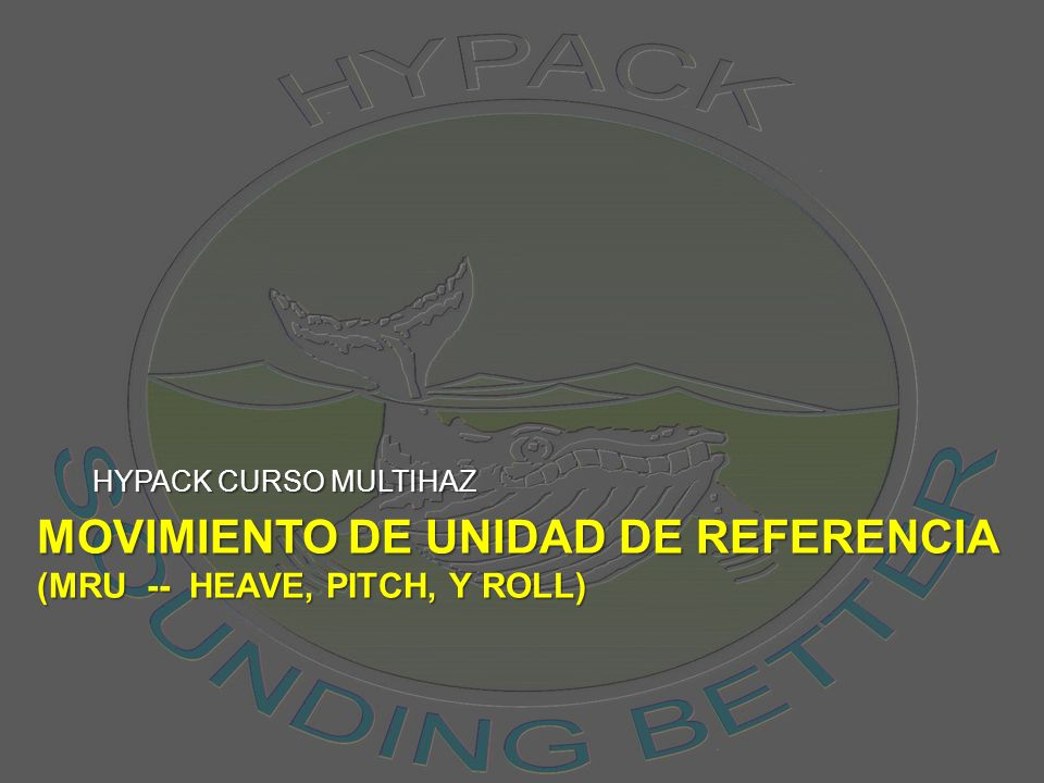 MOVIMIENTO de Unidad de Referencia (Mru -- Heave, pitch, y roll)