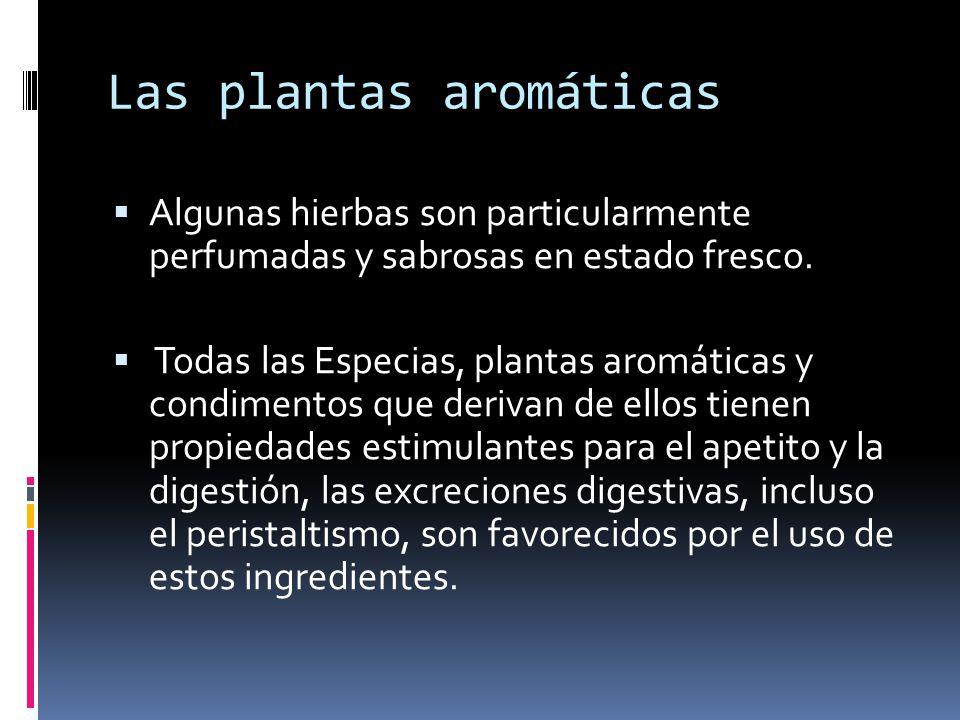 Las plantas aromáticas