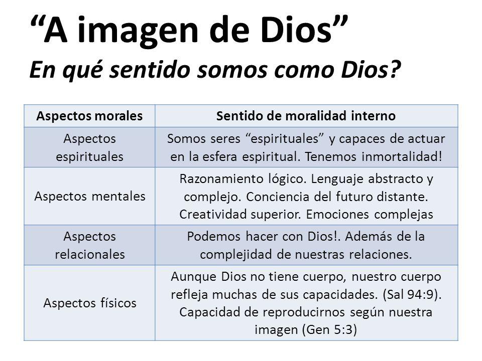 A imagen de Dios En qué sentido somos como Dios
