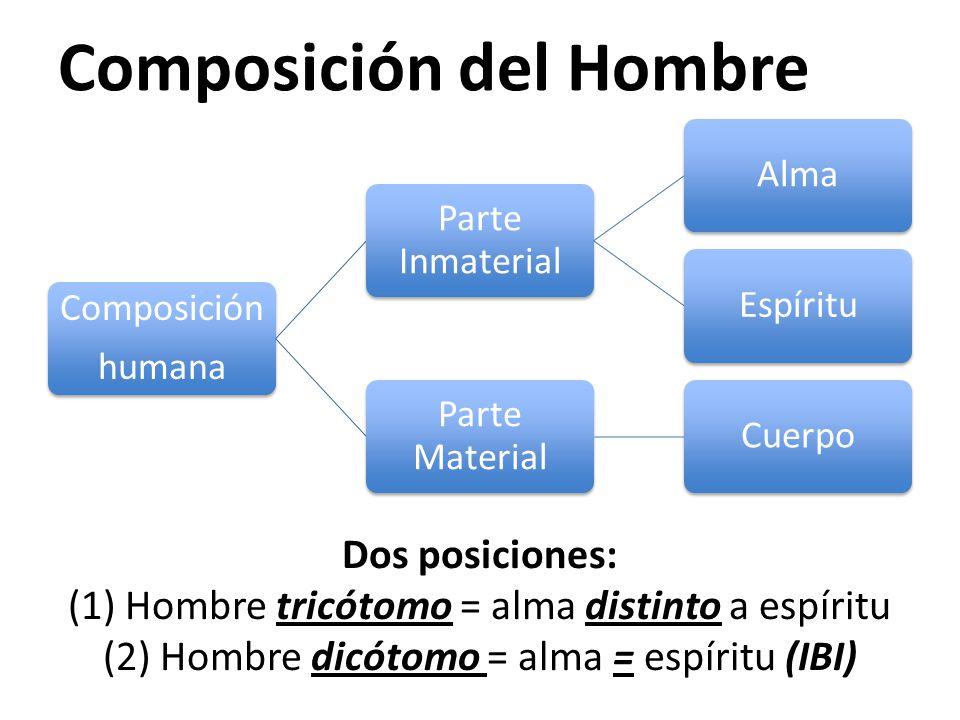 Composición del Hombre