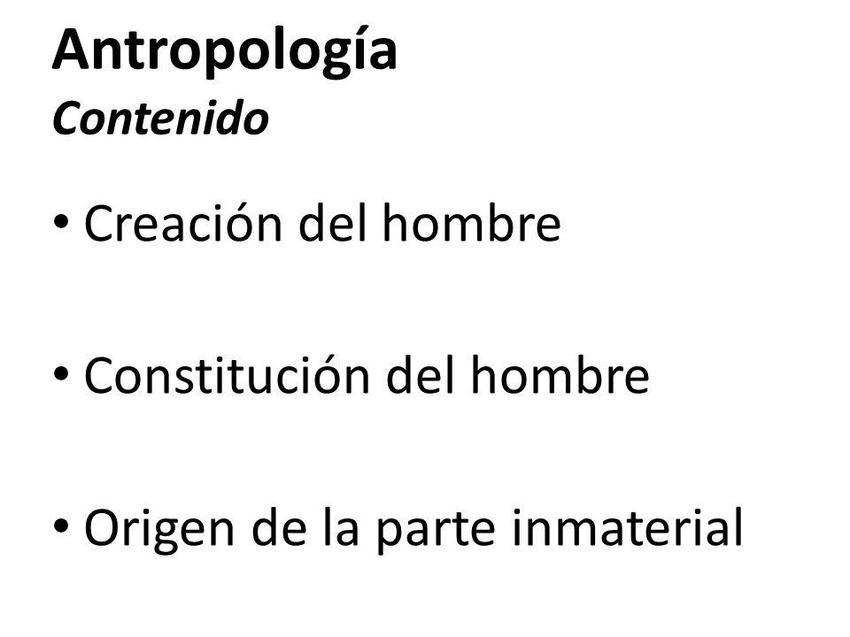 Antropología Contenido