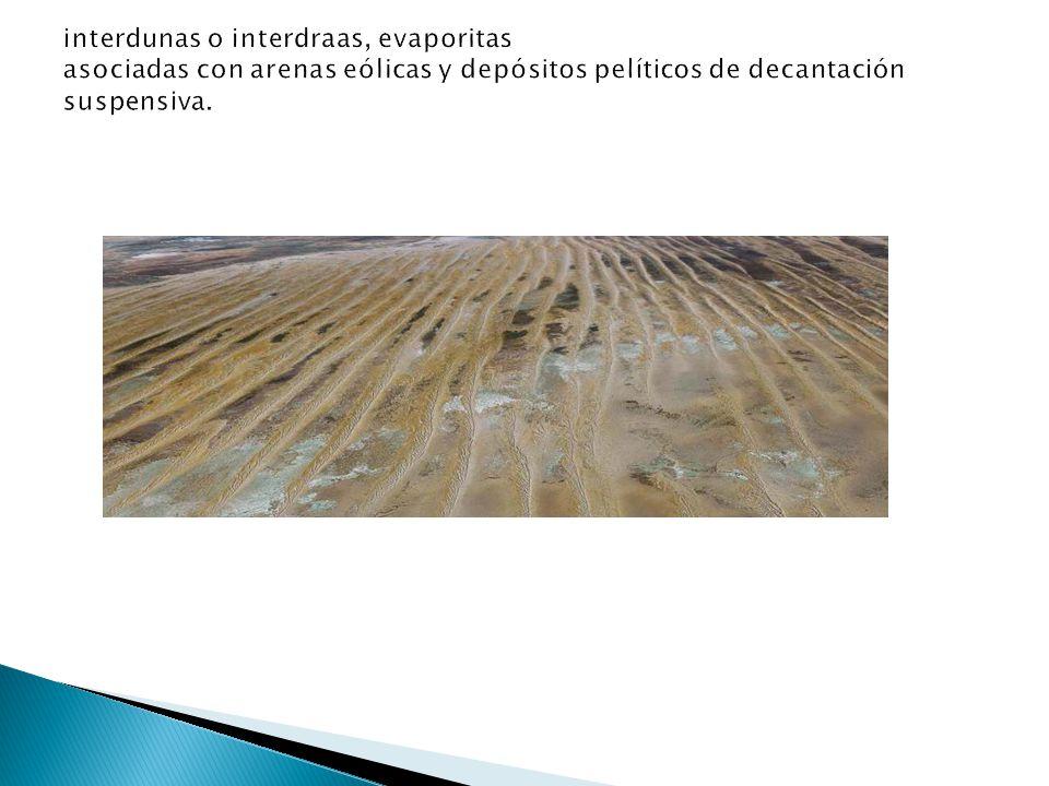 interdunas o interdraas, evaporitas asociadas con arenas eólicas y depósitos pelíticos de decantación suspensiva.