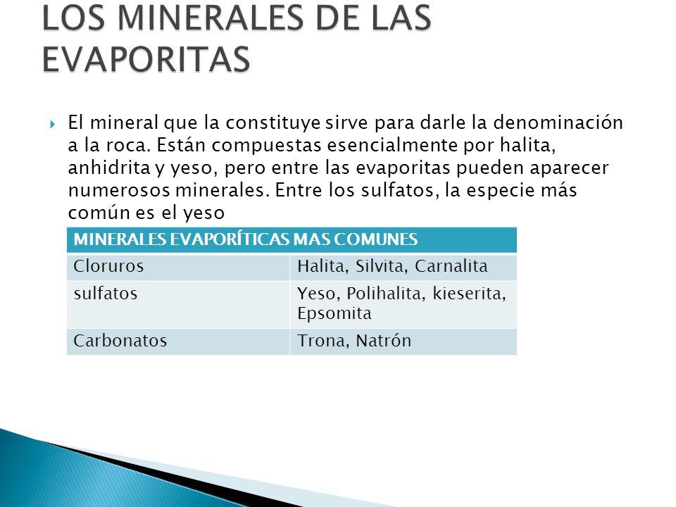 LOS MINERALES DE LAS EVAPORITAS
