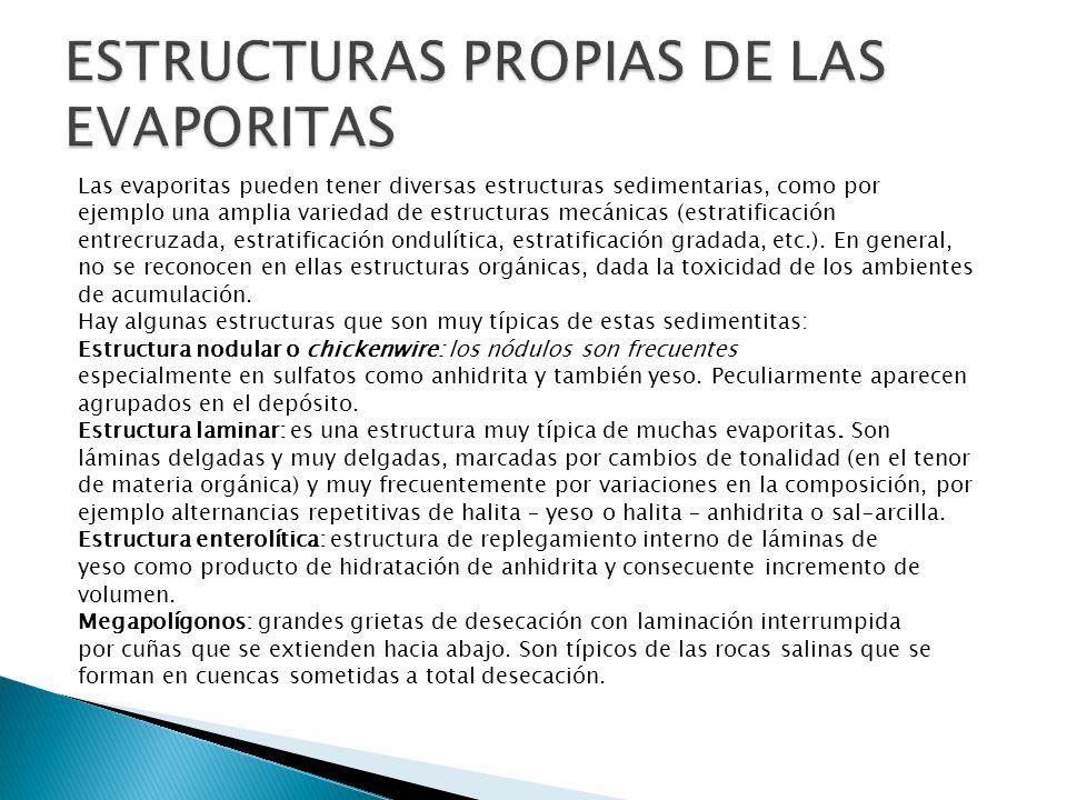 ESTRUCTURAS PROPIAS DE LAS EVAPORITAS