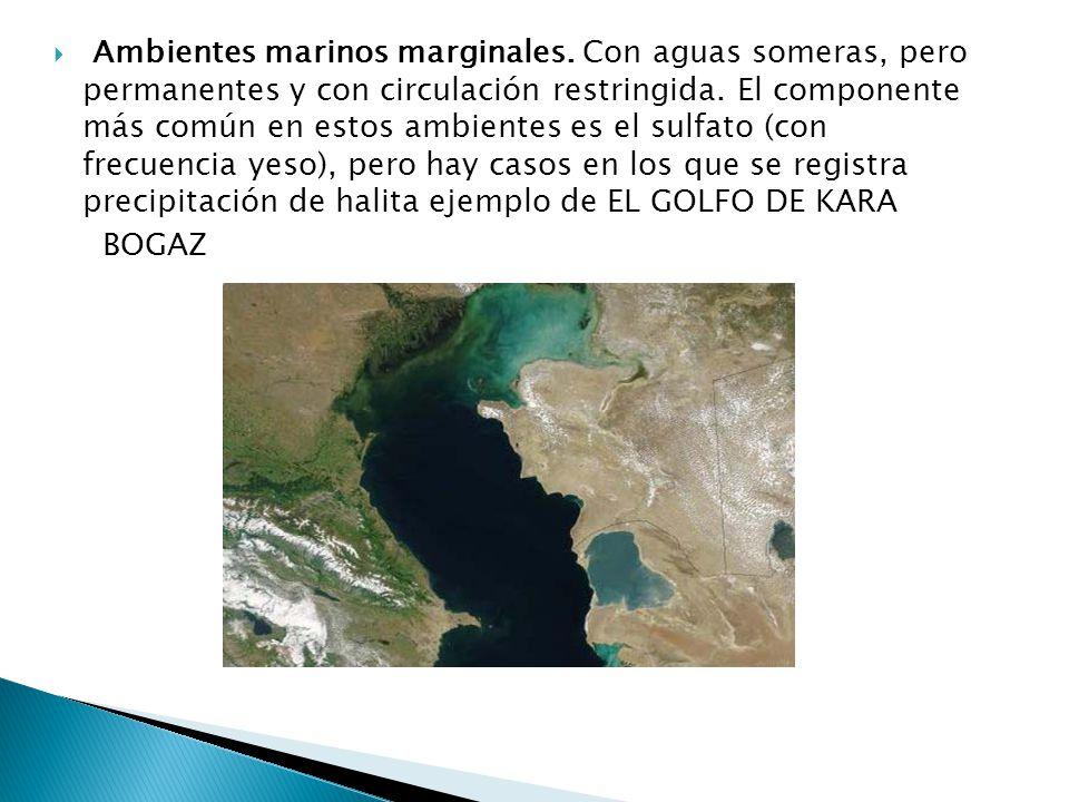 Ambientes marinos marginales