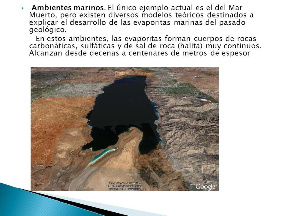 Ambientes marinos. El único ejemplo actual es el del Mar Muerto, pero existen diversos modelos teóricos destinados a explicar el desarrollo de las evaporitas marinas del pasado geológico.