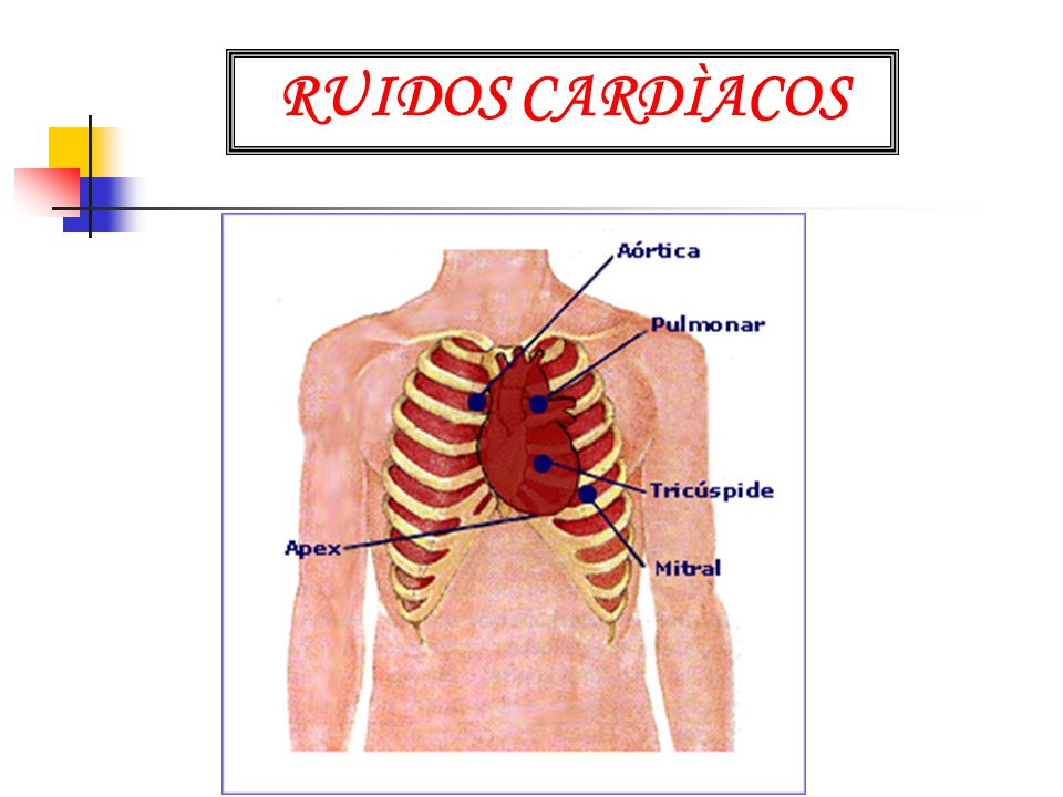 RUIDOS CARDÌACOS