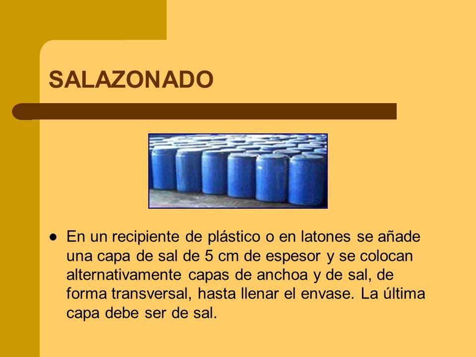 SALAZONADO