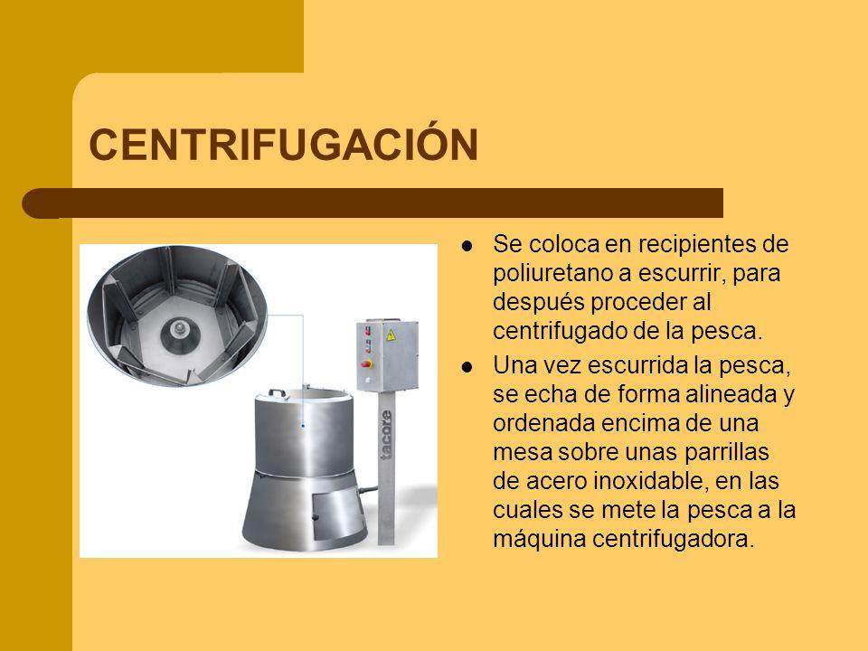CENTRIFUGACIÓN Se coloca en recipientes de poliuretano a escurrir, para después proceder al centrifugado de la pesca.