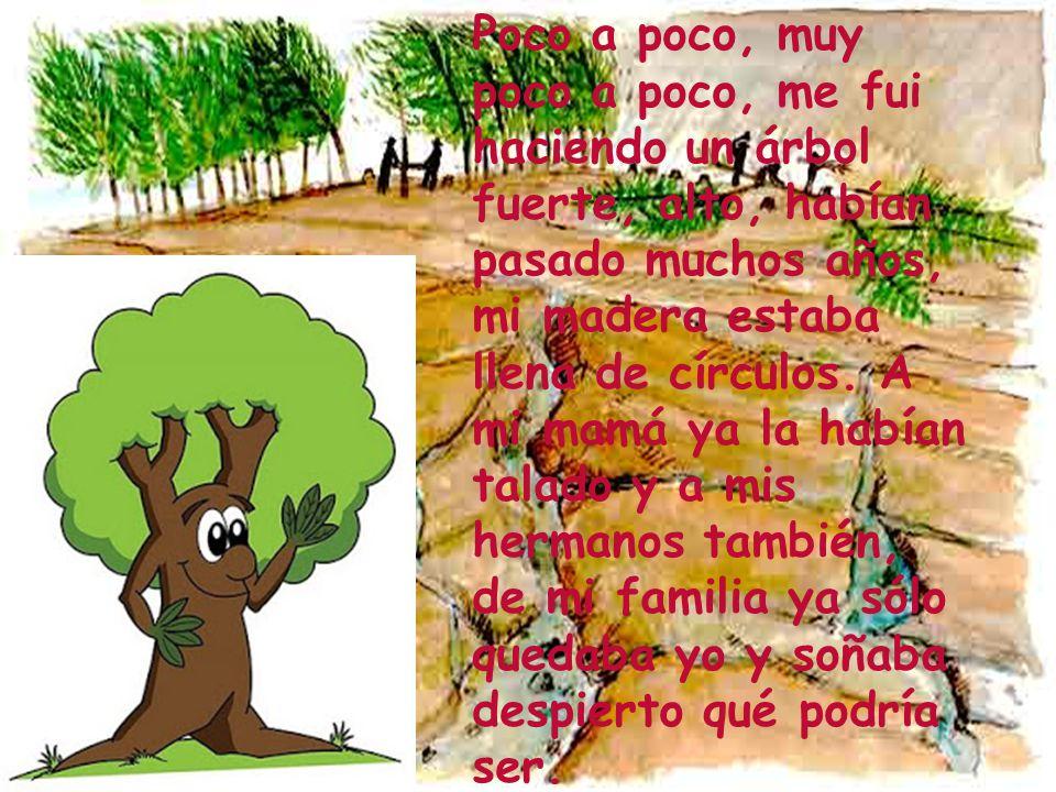Poco a poco, muy poco a poco, me fui haciendo un árbol fuerte, alto, habían pasado muchos años, mi madera estaba llena de círculos.
