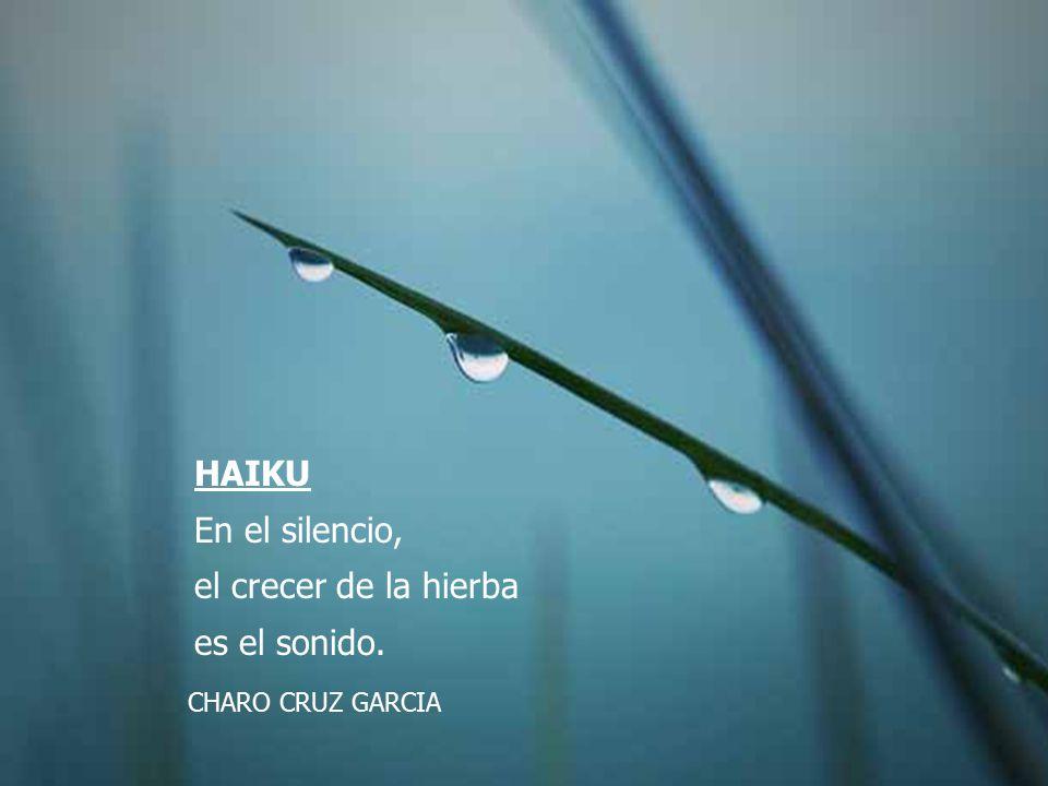 HAIKU En el silencio, el crecer de la hierba es el sonido. CHARO CRUZ GARCIA