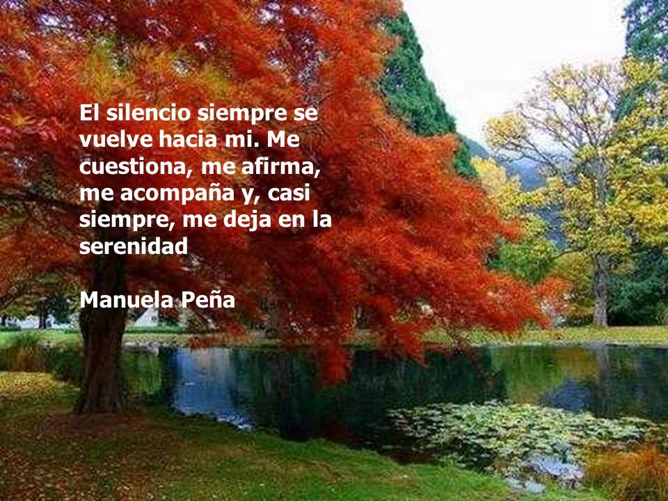 El silencio siempre se vuelve hacia mi