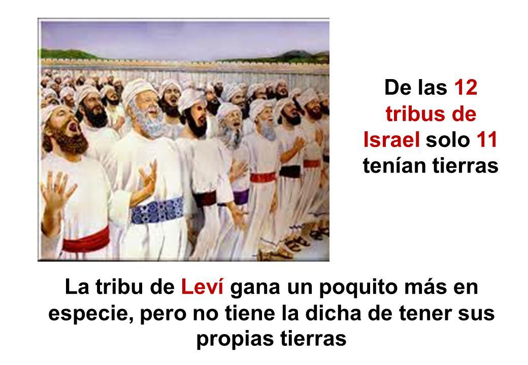 De las 12 tribus de Israel solo 11 tenían tierras