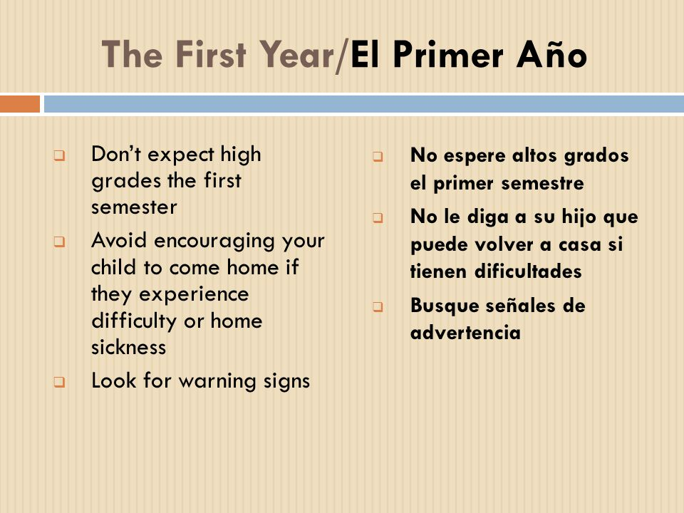 The First Year/El Primer Año