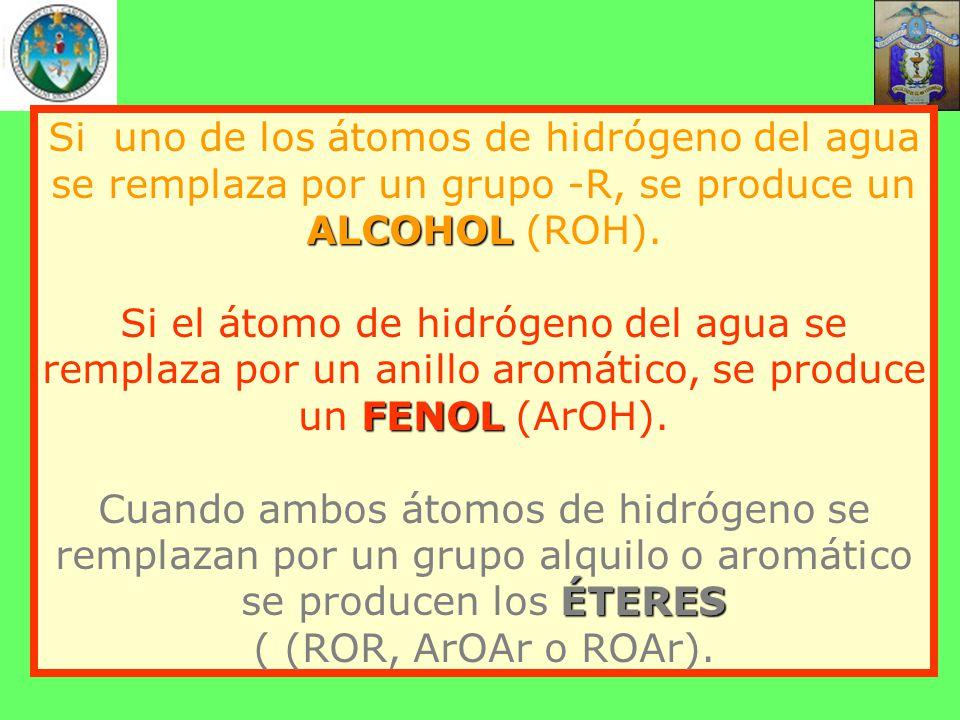 Si uno de los átomos de hidrógeno del agua se remplaza por un grupo -R, se produce un ALCOHOL (ROH).