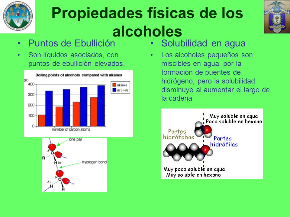 Propiedades físicas de los alcoholes
