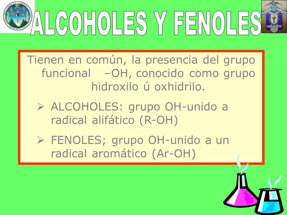 ALCOHOLES Y FENOLES Tienen en común, la presencia del grupo funcional –OH, conocido como grupo hidroxilo ú oxhidrilo.