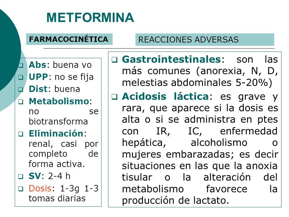 METFORMINA FARMACOCINÉTICA. REACCIONES ADVERSAS. Gastrointestinales: son las más comunes (anorexia, N, D, melestias abdominales 5-20%)