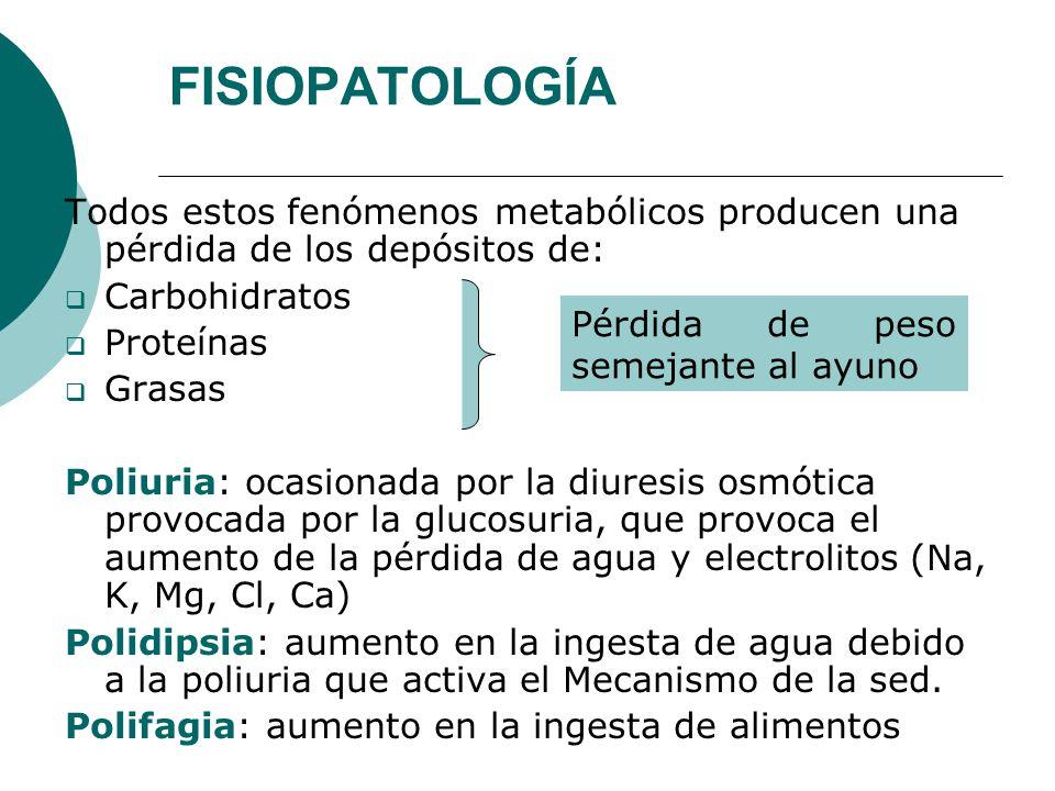 FISIOPATOLOGÍA Todos estos fenómenos metabólicos producen una pérdida de los depósitos de: Carbohidratos.