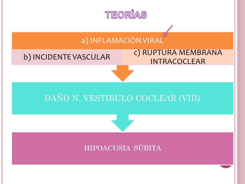 TEORÌAS a) INFLAMACIÒN VIRAL b) INCIDENTE VASCULAR