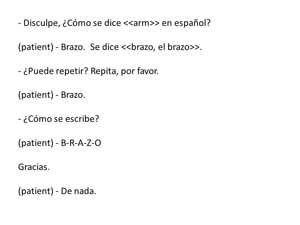 - Disculpe, ¿Cómo se dice <<arm>> en español