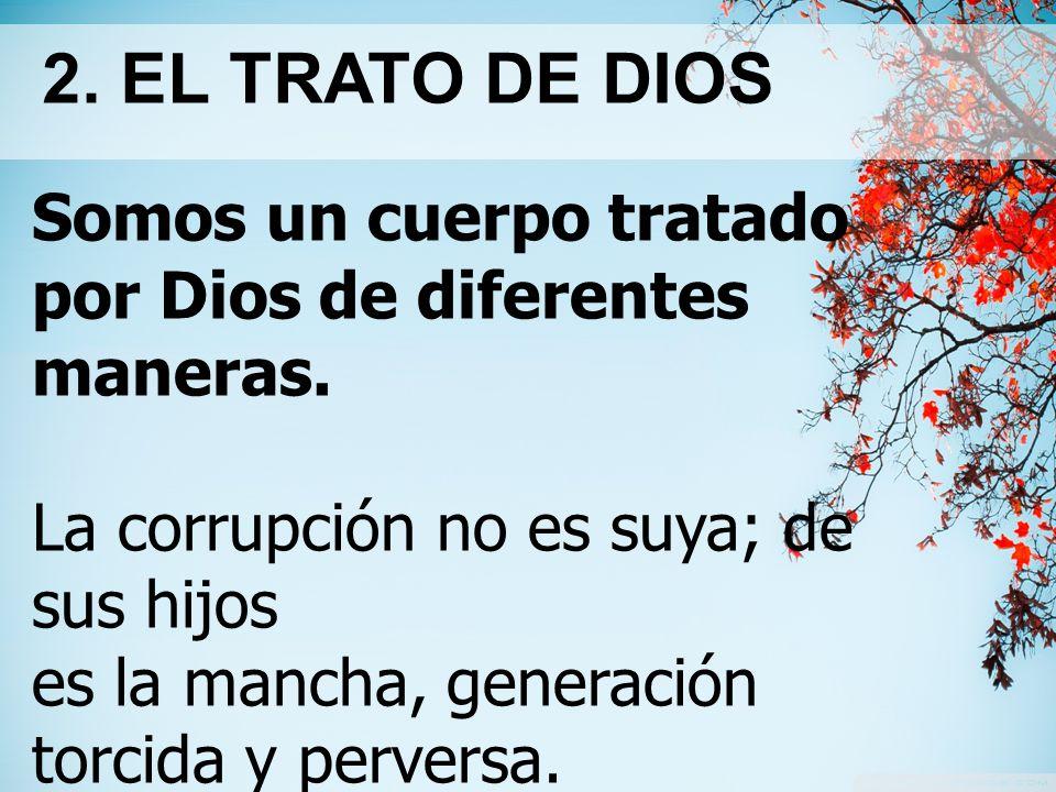 2. EL TRATO DE DIOS Somos un cuerpo tratado por Dios de diferentes maneras. La corrupción no es suya; de sus hijos.