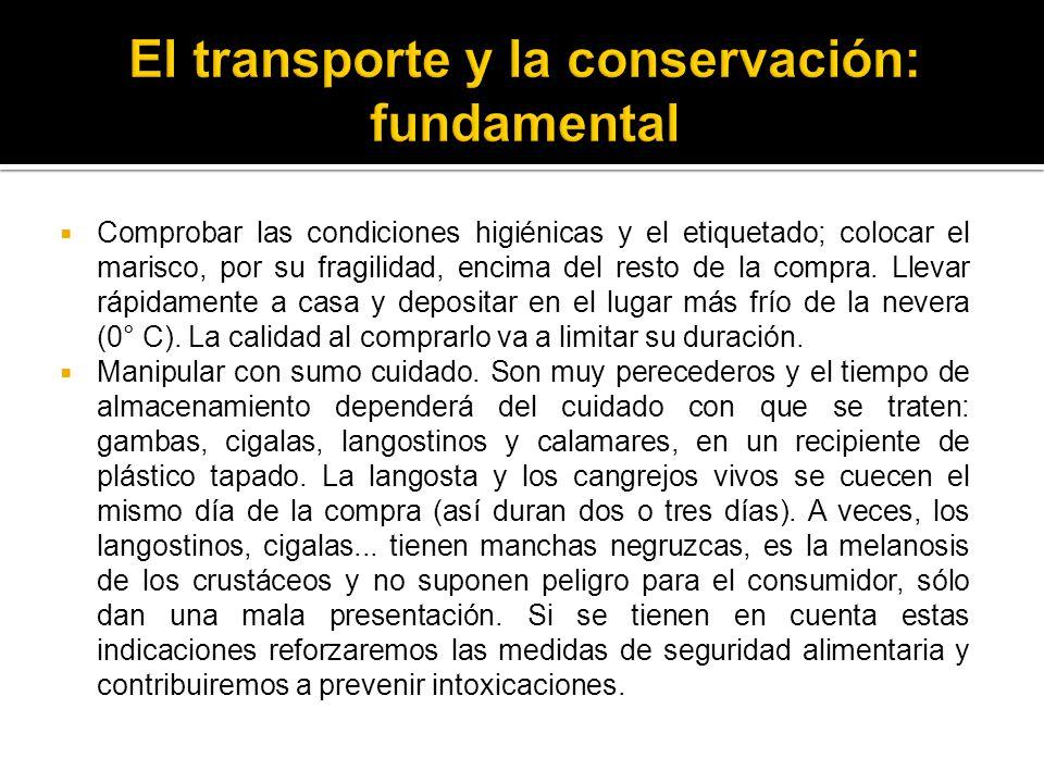 El transporte y la conservación: fundamental