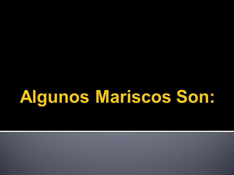 Algunos Mariscos Son: