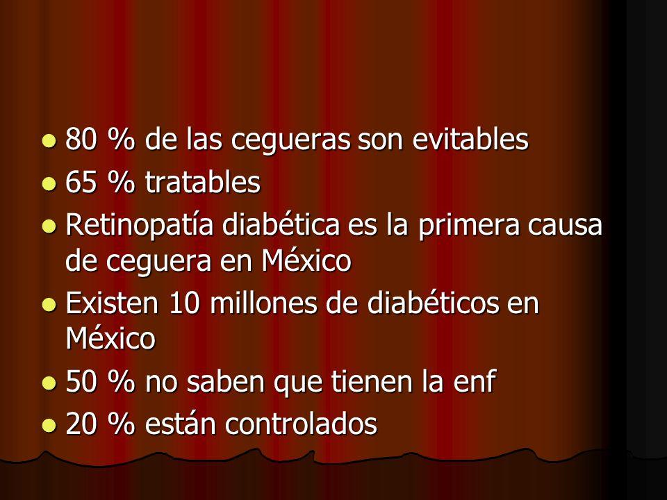 80 % de las cegueras son evitables