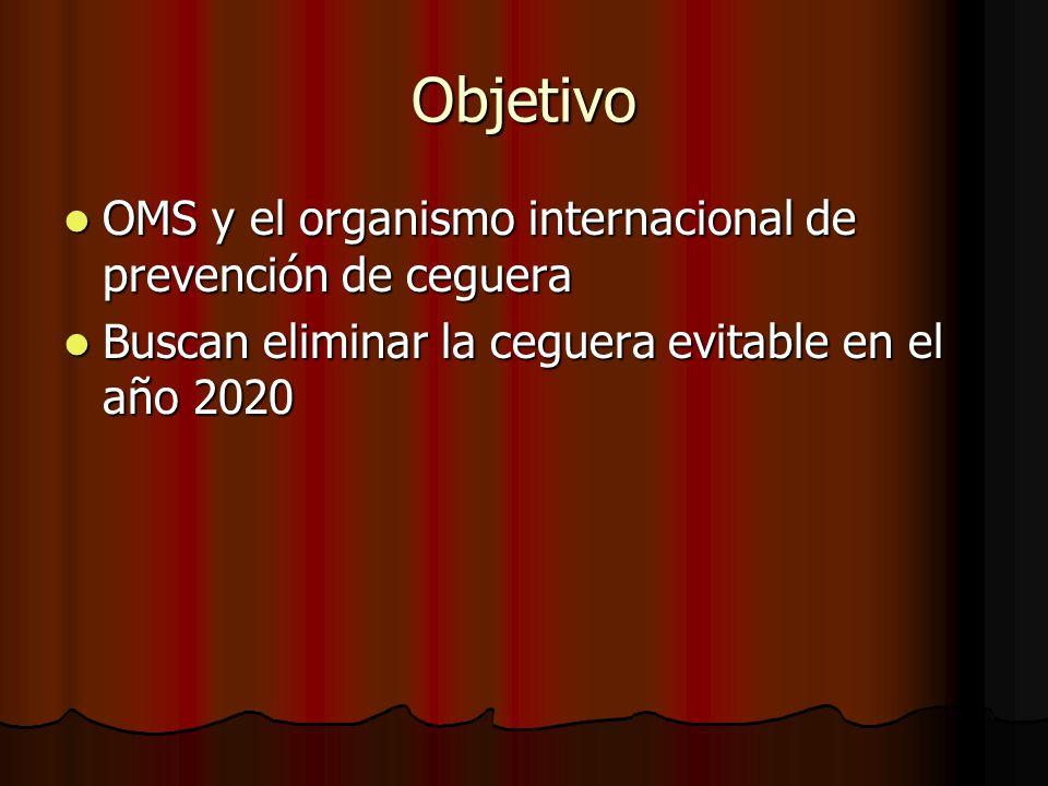 Objetivo OMS y el organismo internacional de prevención de ceguera