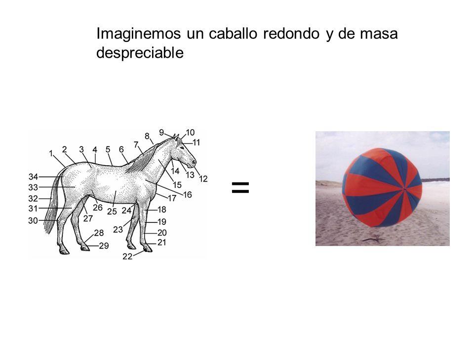 Imaginemos un caballo redondo y de masa despreciable