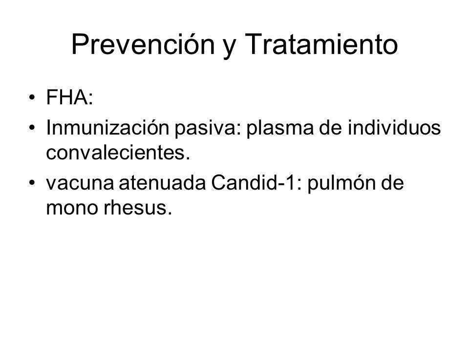 Prevención y Tratamiento