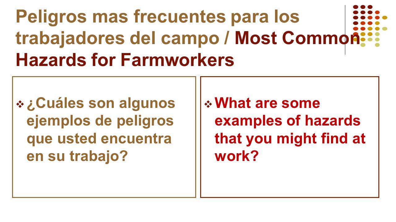 Peligros mas frecuentes para los trabajadores del campo / Most Common Hazards for Farmworkers