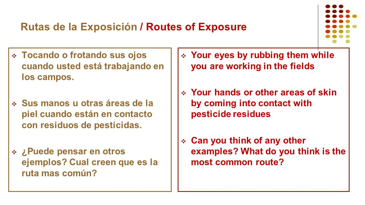 Rutas de la Exposición / Routes of Exposure