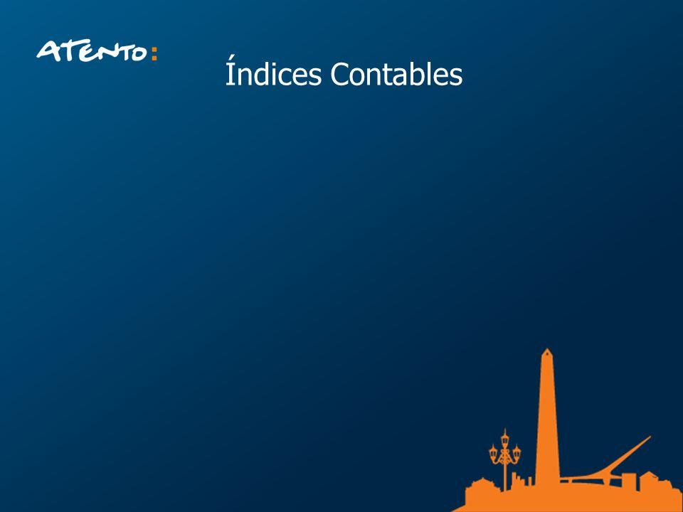 Índices Contables Descripcion de la empresa, paises, clientes, cantidad de empleados, actividad.