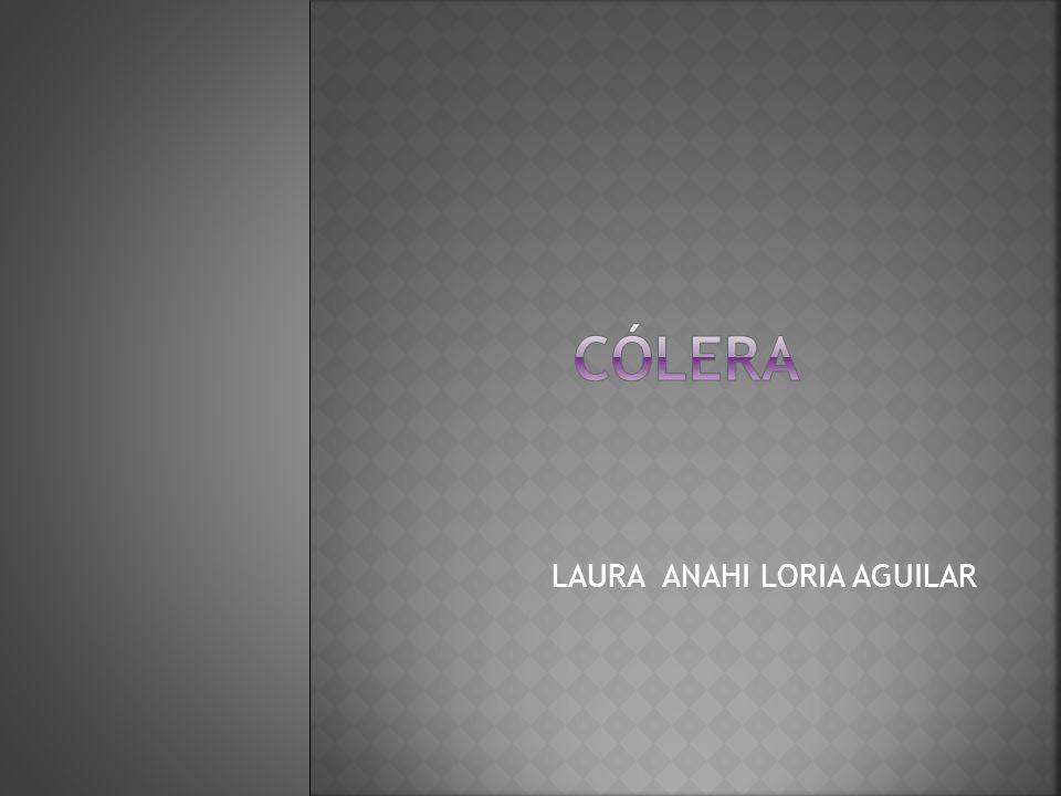 LAURA ANAHI LORIA AGUILAR