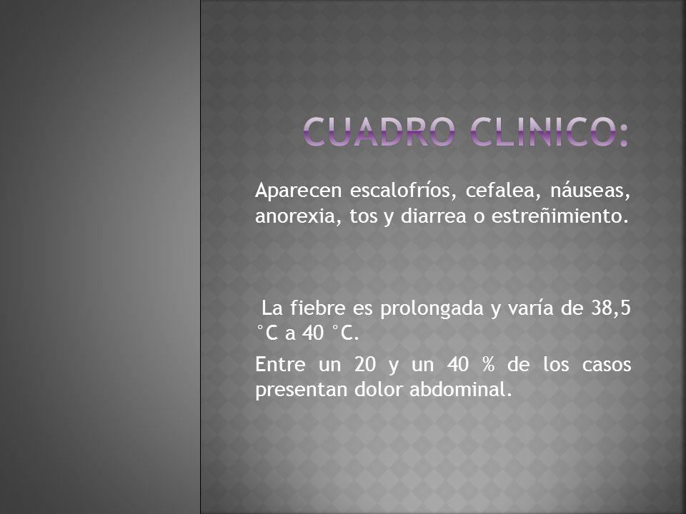 Cuadro clinico: Aparecen escalofríos, cefalea, náuseas, anorexia, tos y diarrea o estreñimiento.