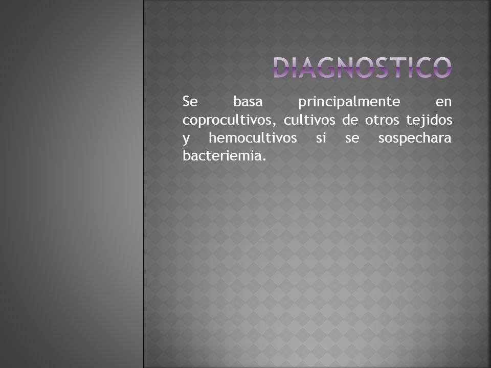 diagnostico Se basa principalmente en coprocultivos, cultivos de otros tejidos y hemocultivos si se sospechara bacteriemia.