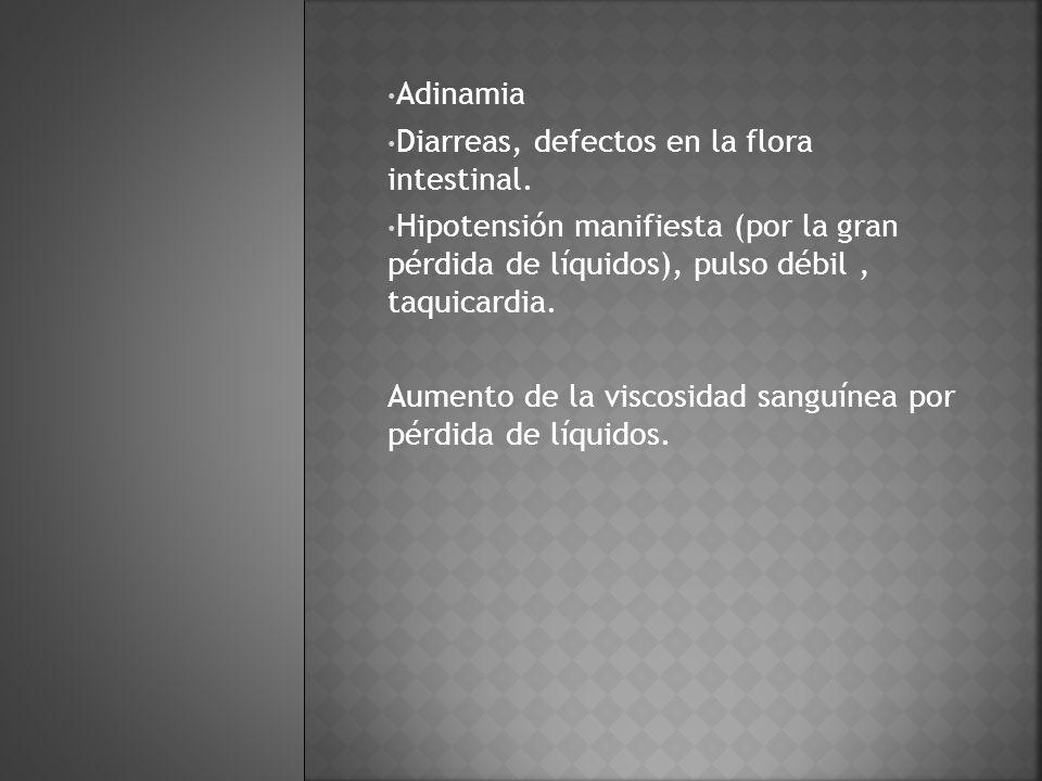 Adinamia Diarreas, defectos en la flora intestinal. Hipotensión manifiesta (por la gran pérdida de líquidos), pulso débil , taquicardia.