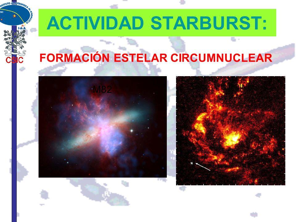 ACTIVIDAD STARBURST: FORMACIÓN ESTELAR CIRCUMNUCLEAR M82 CIRCINUS