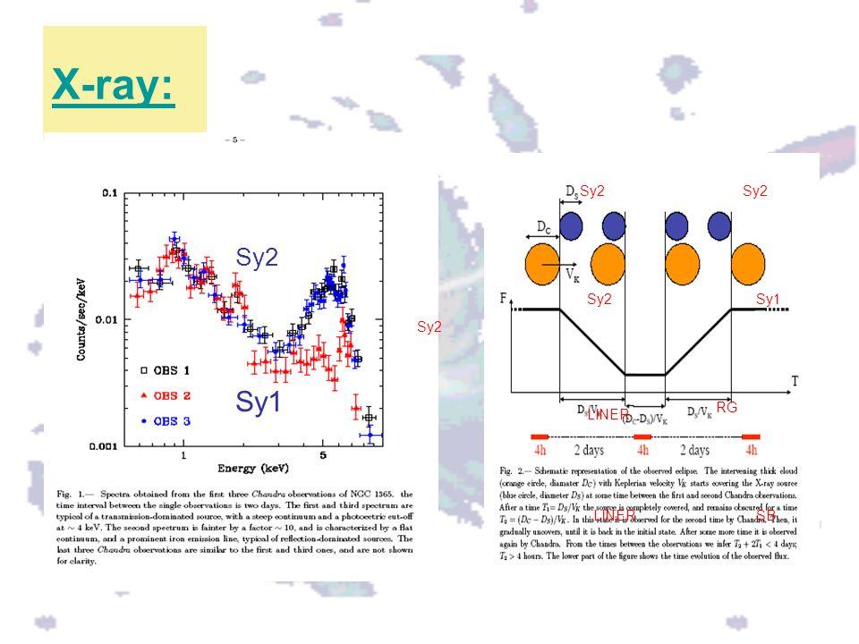 X-ray: Sy2 Sy2 Sy2 Sy2 Sy1 Sy2 Sy1 RG LINER LINER SB