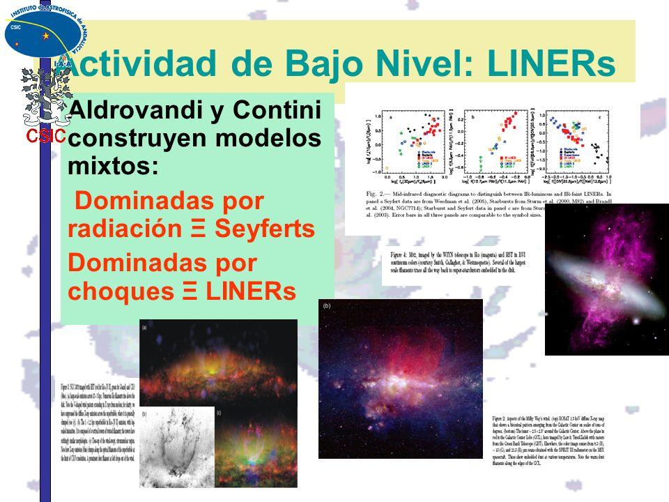Actividad de Bajo Nivel: LINERs