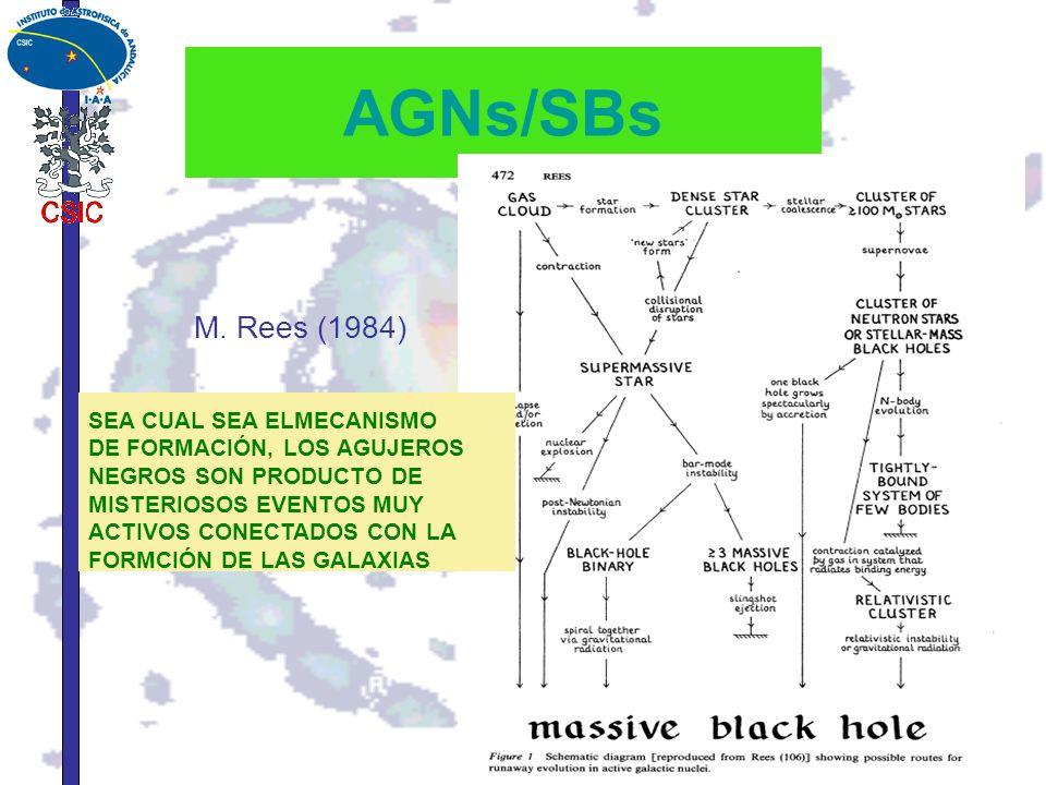AGNs/SBs M. Rees (1984) SEA CUAL SEA ELMECANISMO