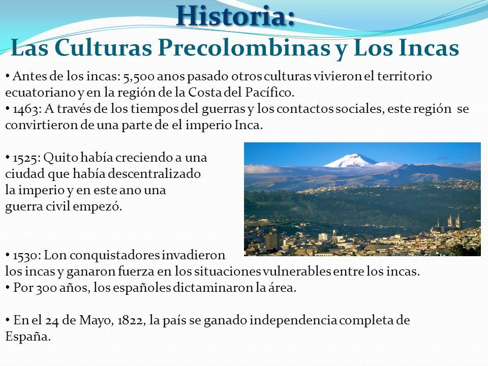 Las Culturas Precolombinas y Los Incas