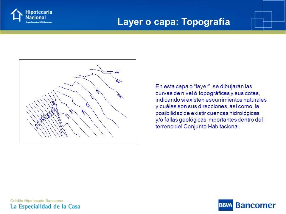 Layer o capa: Topografía