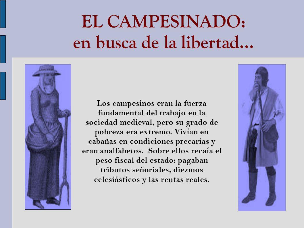 EL CAMPESINADO: en busca de la libertad...